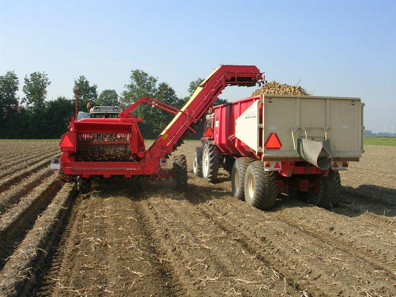 25 september 2005: aardappeloogst
