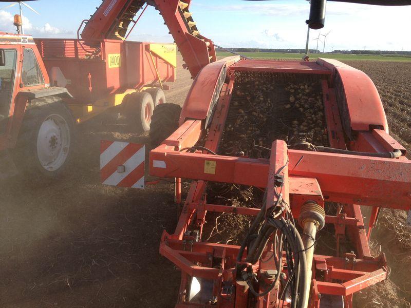 Gewasgroei 2012 - aardappelen