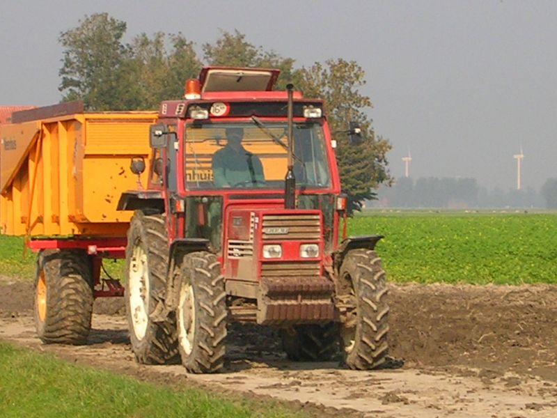 11 oktober 2006: Bildtstar rooien