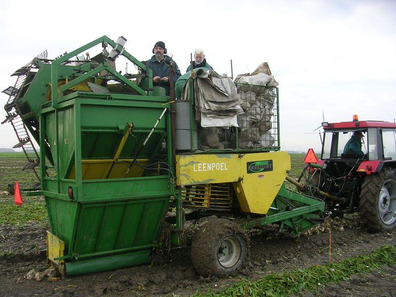 10 november 2007; Suikerbieten rooien en Global Gap