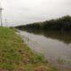 In de Overijsselse tocht, die achterlangs ons bedrijf loopt, staat het water enkele cm's boven de beschoeiing. Voorlopig blijft het wisselvallig. Er moet nog veel gebeuren op het land. Wintertarwe moet gezaaid worden en er moet nog geploegd worden.