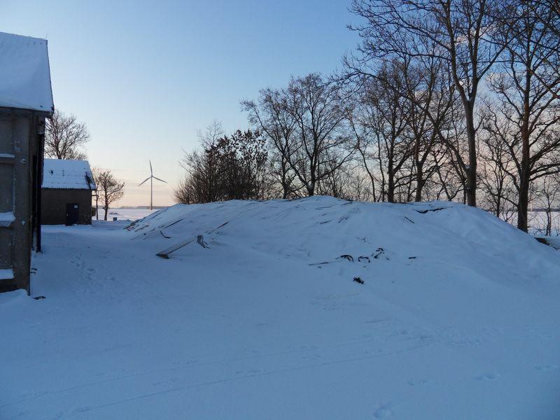 Begin januari worden de bieten opgehaald.