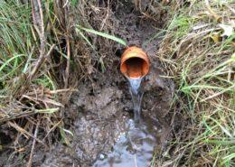Januari 2013; drains controleren