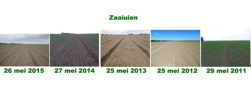 26 mei 2015; 5 jaarlijkse groeivergelijking gewassen