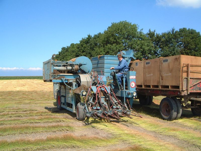 3 september 2010; vlas oogst
