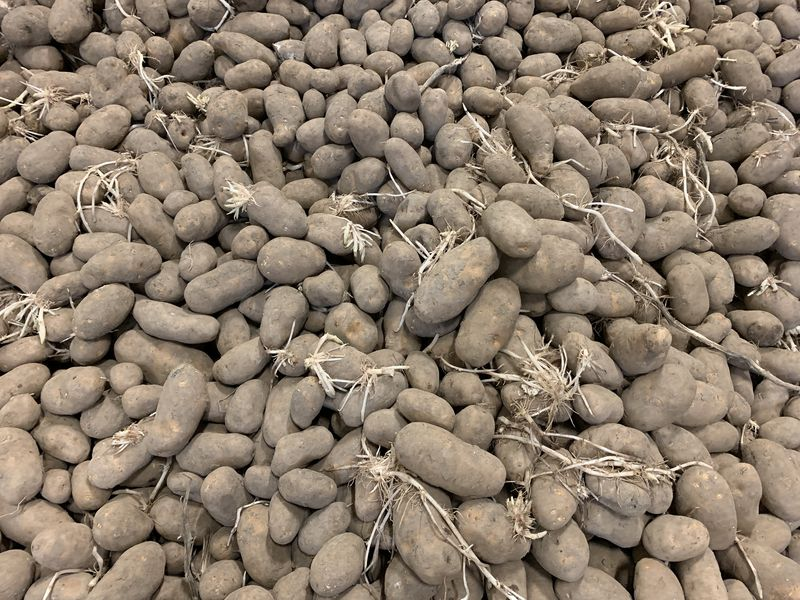 9 en 10 mei 2019; aardappels afleveren
