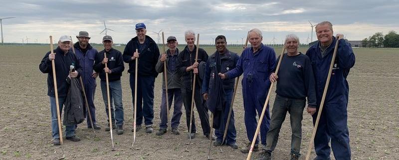 17 mei 2019; proefveld suikerbieten dunnen