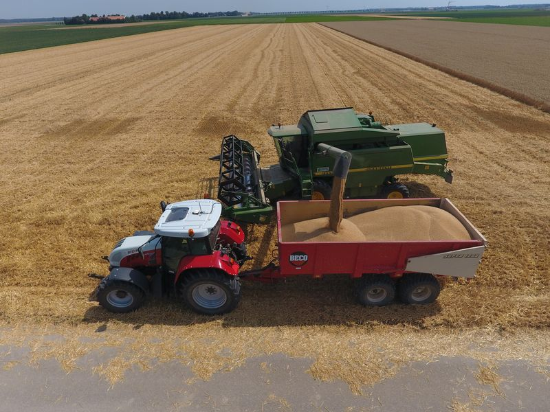 25 juli 2019; wintertarwe oogst