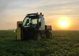 23 augustus 2019; grondmonsters nemen door Agrosupport