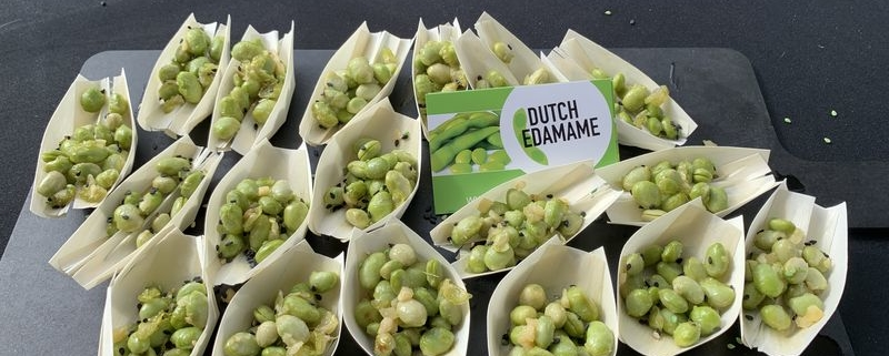 3 september 2019; Dutchsoy velddag