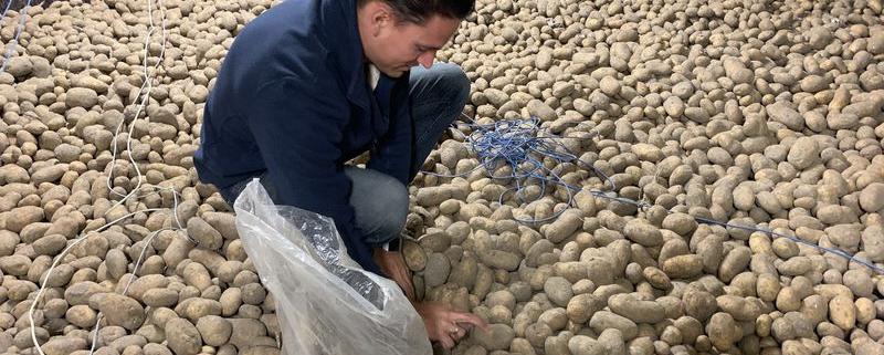 27 maart 2020; Corona virus beheerst frites aardappelmarkt