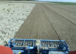 17 april 2020; aardappelland voorbewerken