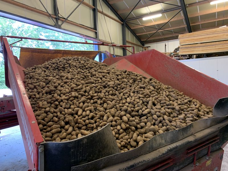 4 juli 2021; aardappels afleveren