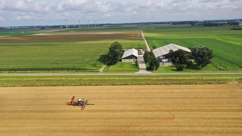 13 augustus 2021; sleepslangen tarwestoppel met rundveedrijfmest