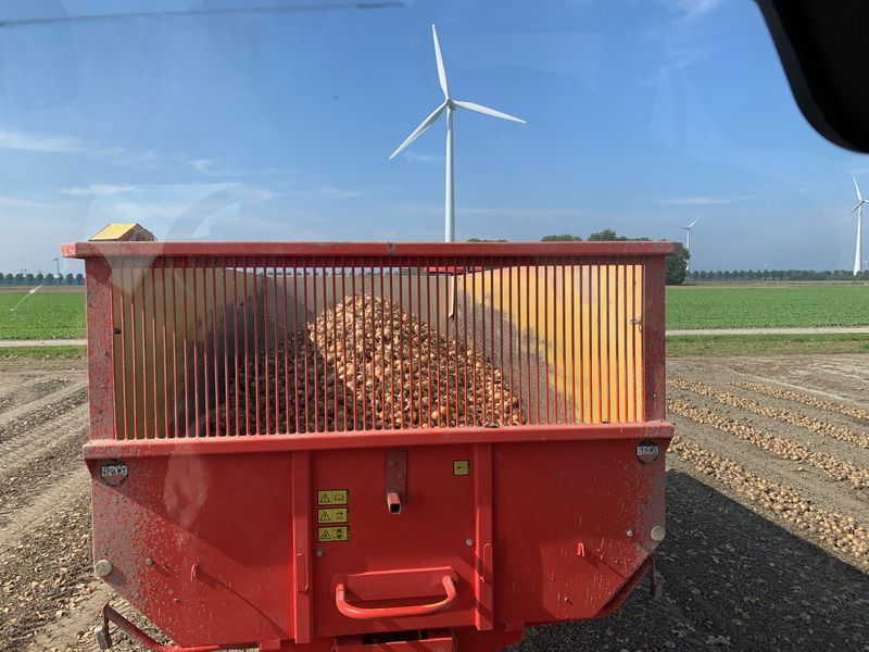 12-14 september 2021; uien oogst bij collega's afgerond