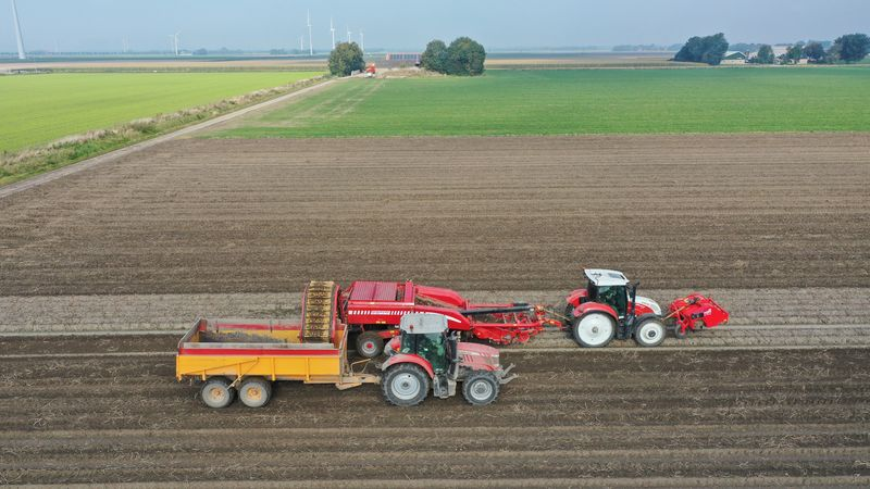 11 oktober 2021; aardappel oogst
